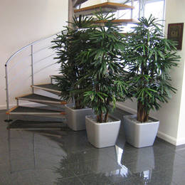 Artificial Rhapis Palm Displays