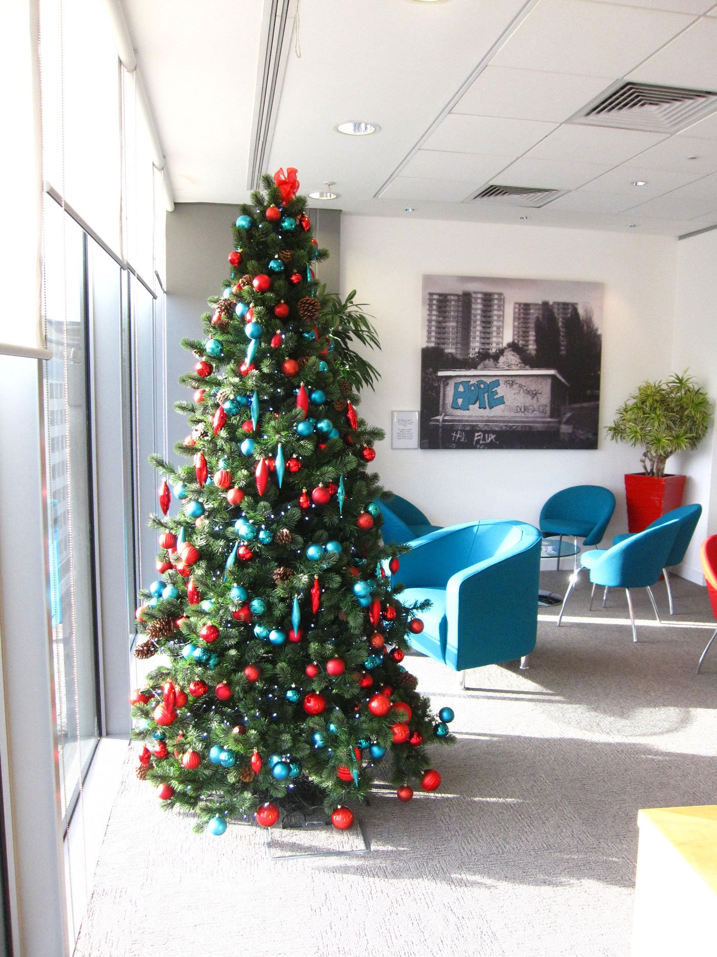 Rent Christmas Decorations.Christmas Tree Hire In Birmingham Services Office Landscapes