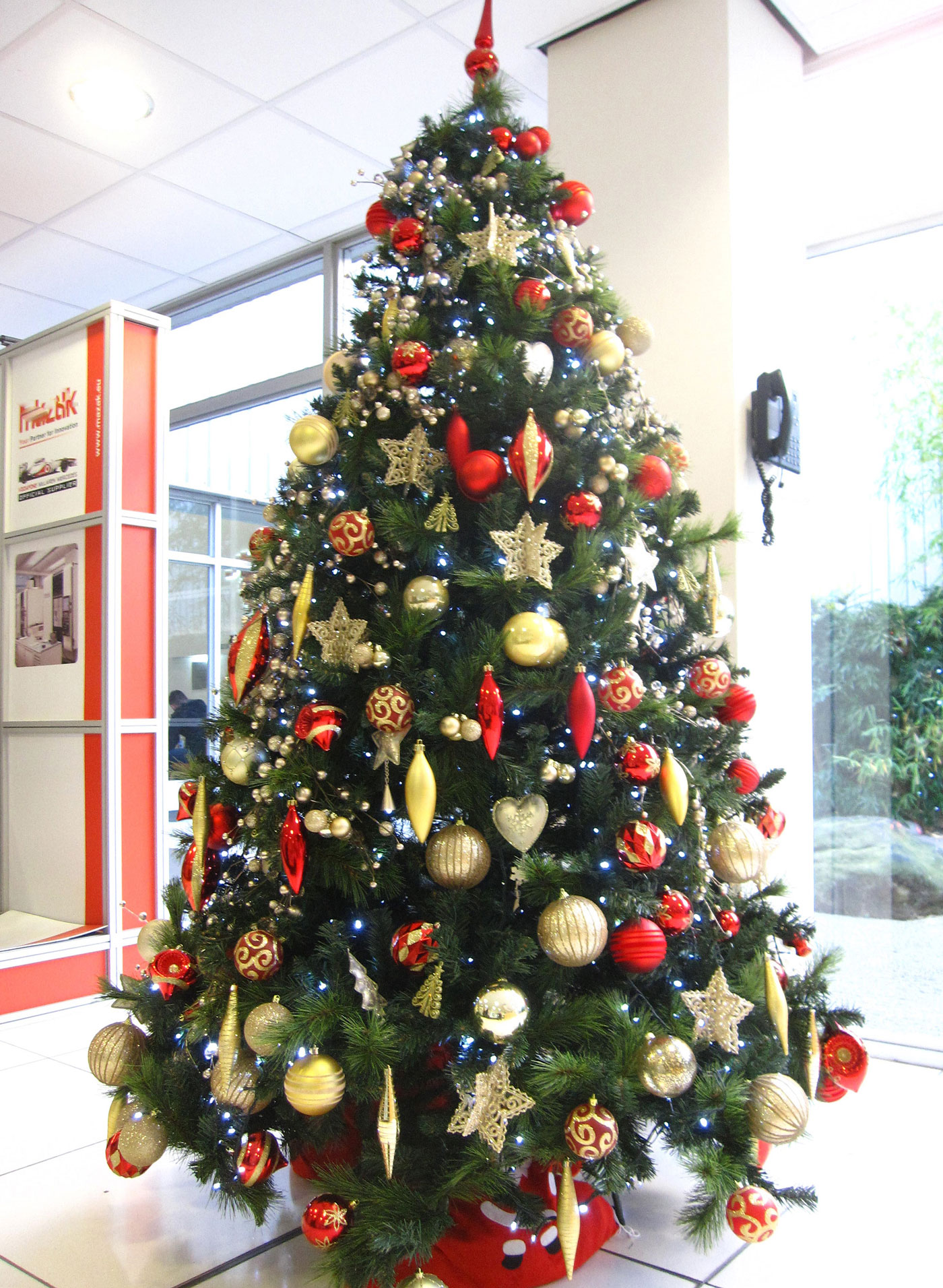 Christmas Tree Hire in Birmingham - Services | Office ...