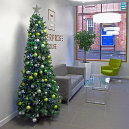 Rent An Artificial Christmas Tree For Enterprise House Birmingham B3 2 Hj