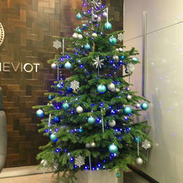 Xmas Tree Hired For A Reception At  2  Snowhill  B4 6Ga
