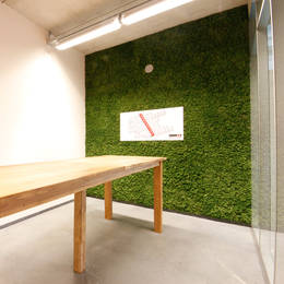 Moss Wall in University Breakout Area