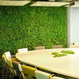 Moss Wall in office Meeting Room