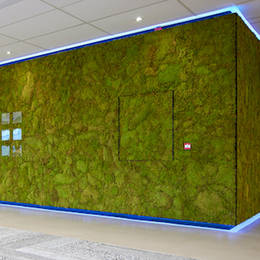 Moss Wall in large Atrium