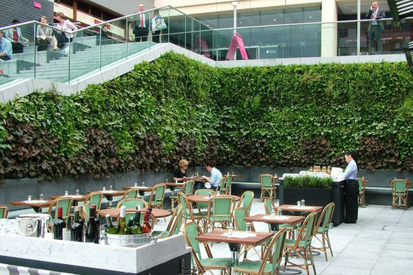 Live Green Walls in Shopping Centre Food Hall