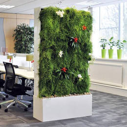 Living Plants Office Divider