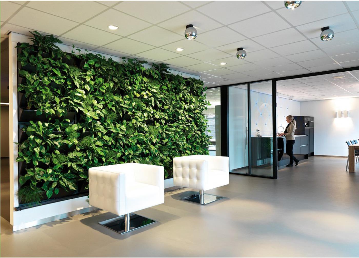 Green walls living walls office landscapes for Green office interior design