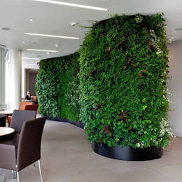 Living Green Walls for shared spaces
