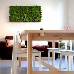 Rectangular Moss Picture mounted on a white wall in a office Breakout Area