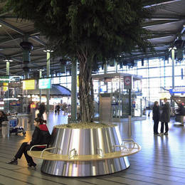 The main passenger hub at Schiphol Airport is greatly improved by these artificial Ficus tree displays with seating around the stainless steel containers