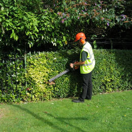 We can take care of all of your companies Hedge Cutting requirements as part of our Grounds Maintenance Services