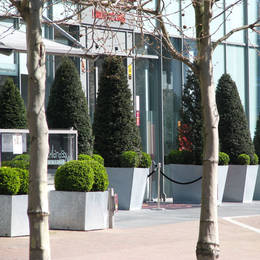 Office Landscapes supply some stunning exterior displays to London's Crowne Plaza Docklands Hotel