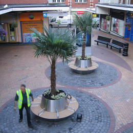 Stainless steel seating planters with Trapycarpus Palms located in a West Midlands shopping centre