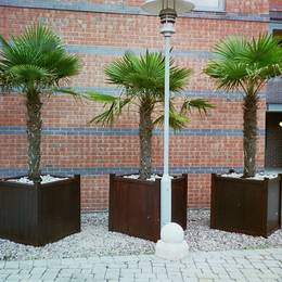 Square wooden Versailles exterior planters make a striking landscaping feature in the courtyard of this city living devolpment in Birmingham