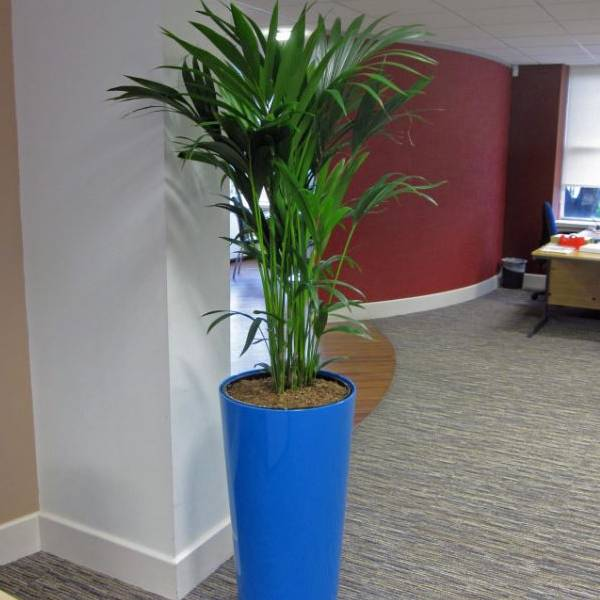 Green Plant Containers using Recycled Materials