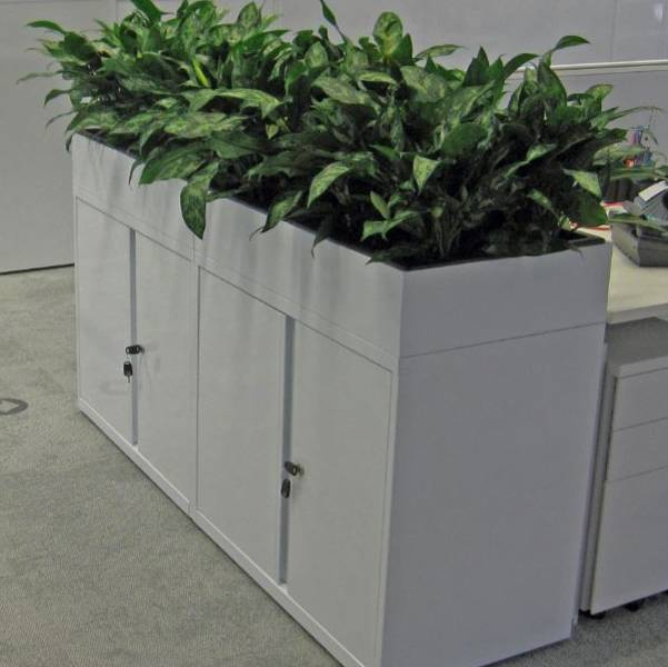 Cabinets with built in Planters give maximum visual impact as well as all of the other Health Benefits that live plants bring
