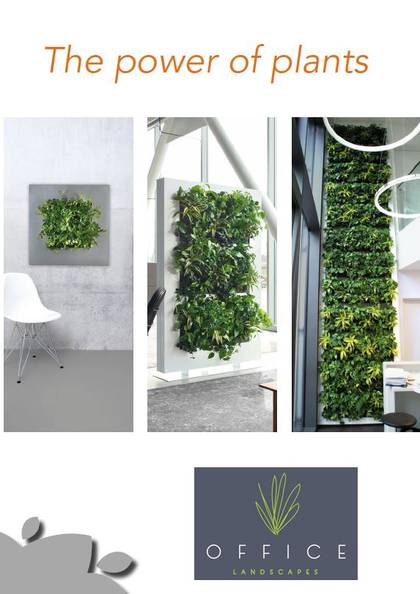 Live Pictures & Living Green Walls for Offices & Receptions