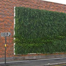 Interior & Exterior Living Green Walls supplied & fully maintained