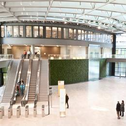 Living Green Walls for public Atriums