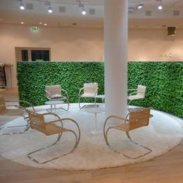 Living Green Walls for Offices