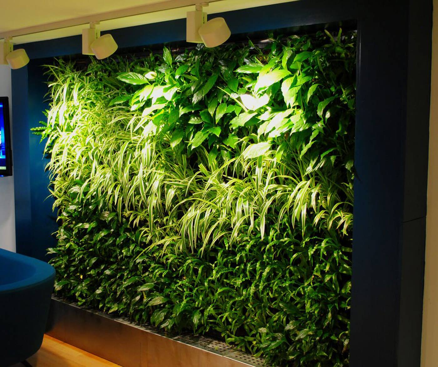 Images of green walls for offices office landscapes green walls with additional grow lighting improve the look of the wall help the plants aloadofball Gallery