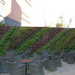 Green Walls can be used for commercial & residential buildings