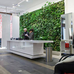 Green Walls greatly enhance any commercial premises, workplace or home