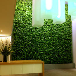 Green Walls look great in office Reception areas, Pubs & Restaurants