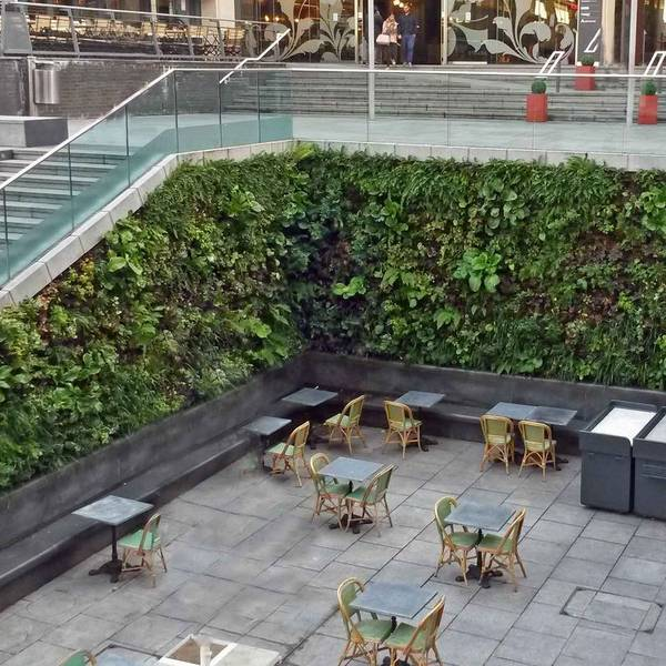 Green Walls are vertical gardens for all business Landscapes