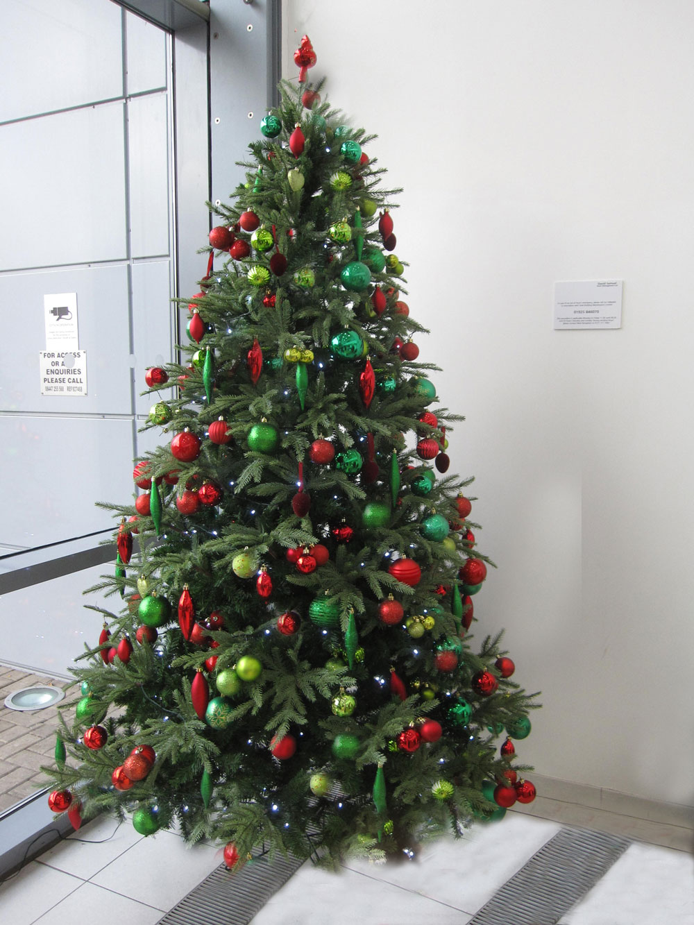 Images Of Christmas Trees Office Landscapes