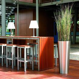 Artificial Foxtail Grass Plant In Modern Office Breakout Area