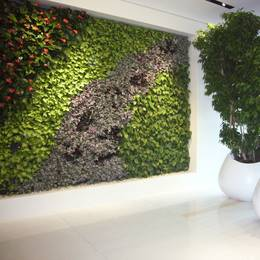 Artificial Green Walls for Offices, Reception areas, Hotels & Restaurants