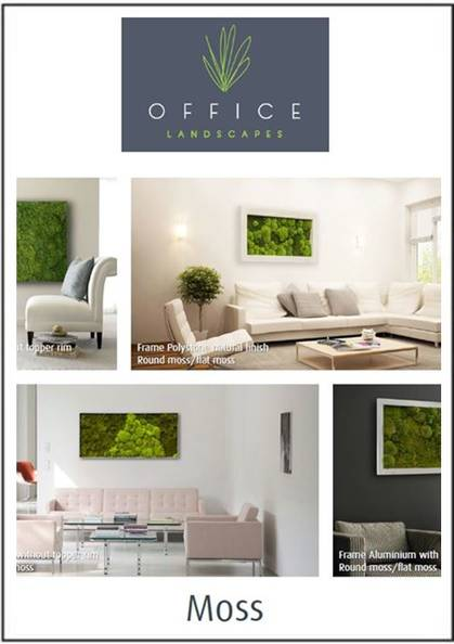We install preserved Moss Walls which create a stunning visual impact. Also popular are Moss Logos, Moss Art & Moss Frames