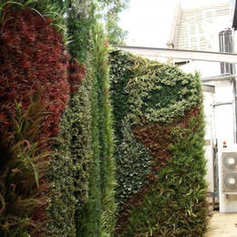 Artificial Green Wall using mixed Foliage with patterns running through