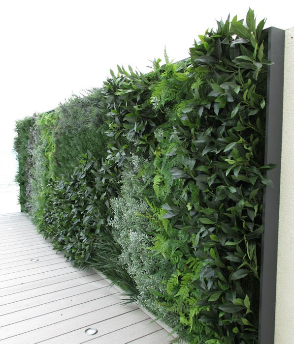Images Of Artificial Green Walls Office Landscapes