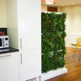 Artificial Freestanding Green Wall Used As A Room Divider