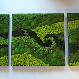 Moss Picture design using wood & different colours