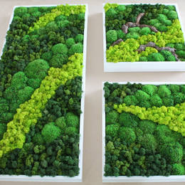 Moss Picture design with wood & different colours & types of moss