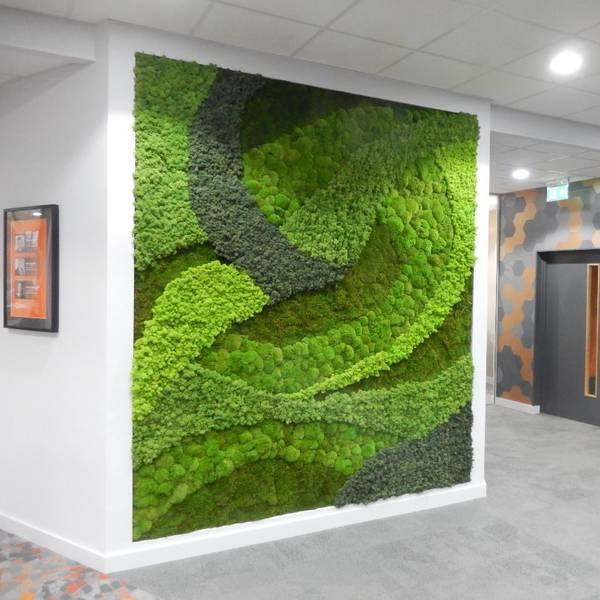 Moss Wall Art Design for Office Receptions