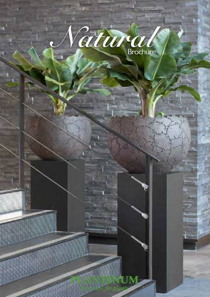 Natural Plant Containers for healthy green plant displays for your office