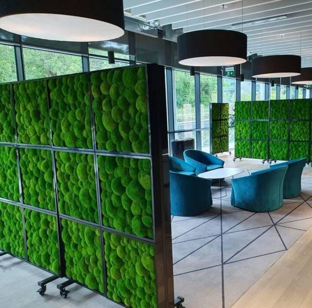 Green Screens Moss Walls and planted office room dividers